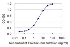 Sandwich ELISA - Anti-HSFY2 antibody (ab118131)