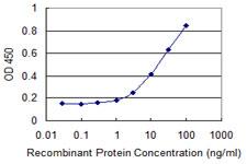 Sandwich ELISA - Anti-ZNHIT2 antibody (ab118133)