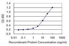 - Anti-HDDC3 antibody (ab118325)