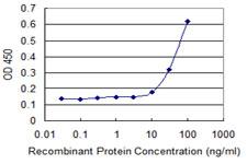 Sandwich ELISA - Anti-HOXB9 antibody (ab118328)