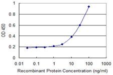 Sandwich ELISA - Anti-HAPLN4 antibody (ab118333)