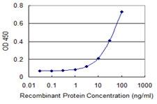 Sandwich ELISA - Anti-Uba6 antibody (ab118344)