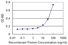 Sandwich ELISA - Anti-SLC22A6 antibody (ab118346)