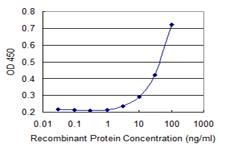 Sandwich ELISA - Anti-FBX09 antibody (ab118381)