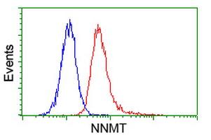 Flow Cytometry - NNMT antibody [3E3] (ab118403)
