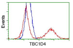 Flow Cytometry - Anti-TBC1D4 antibody [5E6] (ab119004)