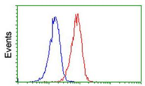 Flow Cytometry - Anti-INDOL1 antibody [1A4] (ab119047)