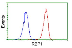 Flow Cytometry - Anti-RBP1 antibody [2H3] (ab119056)