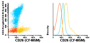 Flow Cytometry - Anti-CD26 antibody [TP1/19] (CF405M) (ab119480)