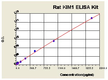 Sandwich ELISA - KIM1 Rat ELISA Kit (ab119597)