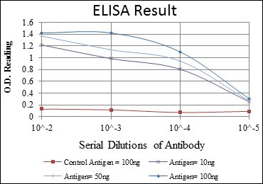 ELISA - Anti-c-Jun antibody [5B1] (ab119944)