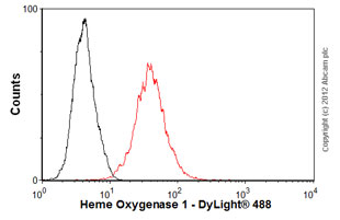 Flow Cytometry-Anti-Heme Oxygenase 1 antibody [GTS-1](ab12220)