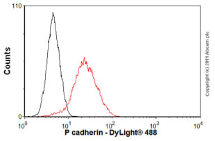 Flow Cytometry-Anti-P cadherin antibody [NCC-CAD-299](ab12222)