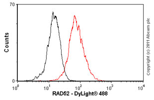 Flow Cytometry-Anti-RAD52 antibody [5H9](ab12447)