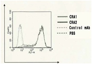 Flow Cytometry - Anti-Fc epsilon RI antibody [CRA1] (Biotin) (ab122882)