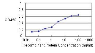 Sandwich ELISA - Anti-CBS antibody [3E1] (ab124276)