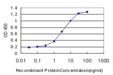 Sandwich ELISA - Anti-HIF1 beta antibody [3D10] (ab124359)
