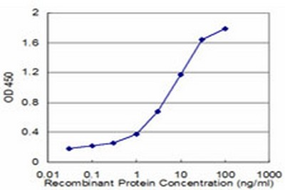 Sandwich ELISA - Anti-FADS1 antibody [2D9] (ab124363)