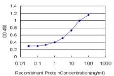Sandwich ELISA - Anti-FOXO3A antibody [3C2] (ab124394)