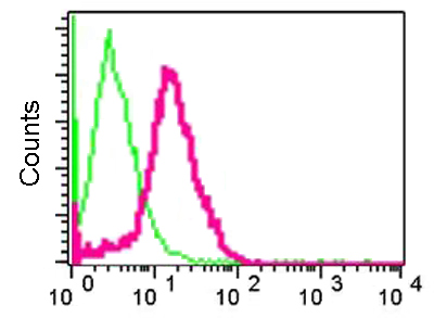 Flow Cytometry - Anti-CAP2 antibody [EPR6377] (ab124692)