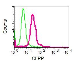 Flow Cytometry - Anti-CLPP antibody [EPR7133] (ab124822)