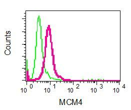Flow Cytometry - Anti-MCM4 antibody [EPR5245] (ab124836)