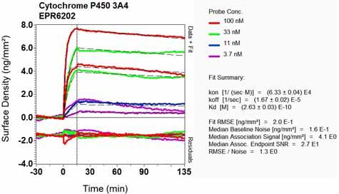Other-Anti-Cytochrome P450 3A4 antibody [EPR6202](ab124921)