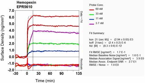 Other-Anti-Hemopexin antibody [EPR5610](ab124935)