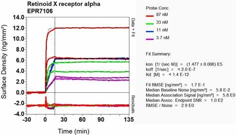 Other-Anti-Retinoid X Receptor alpha antibody [EPR7106](ab125001)
