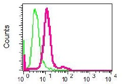 Flow Cytometry - Anti-Renin [EPR6433] antibody (ab125012)