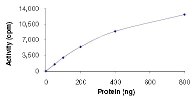 Functional Studies - STK38L protein (Active) (ab125530)