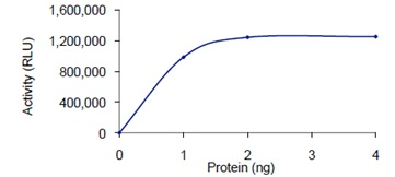 Functional Studies - PDE4D protein (Active) (ab125534)