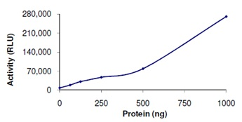 Functional Studies - PDE6 beta protein (Active) (ab125593)