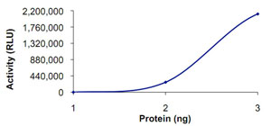 Functional Studies - PDE4A protein (Active) (ab125603)