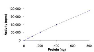 Functional Studies - MLK3 protein (ab125630)