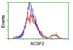 Flow Cytometry - Anti-ACSF2 antibody [6E4] (ab128527)