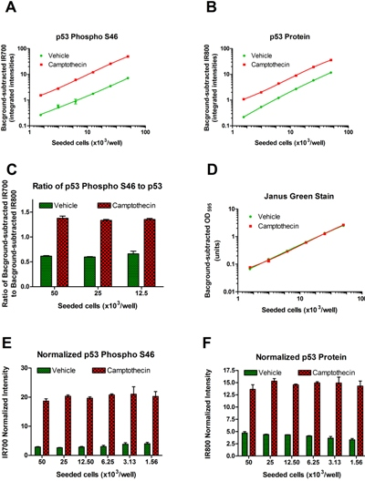 In-Cell ELISA - p53 Total + pSer46 Human In-Cell ELISA Kit (IR) (ab128570)