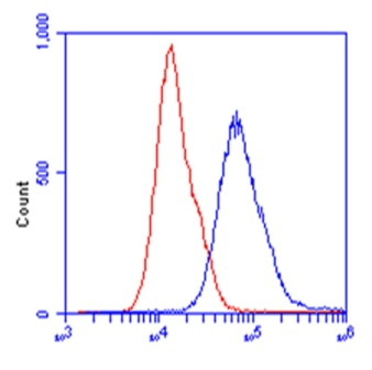 Flow Cytometry - Anti-ALDOB antibody [5E2BD2] (ab129728)
