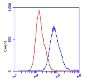 Flow Cytometry - Anti-ALDOB antibody [5E2BD2] (ab129728)