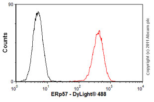Flow Cytometry-Anti-ERp57 antibody [MaP.Erp57](ab13506)
