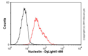 Flow Cytometry - Nucleolin antibody [4E2] - ChIP Grade (ab13541)