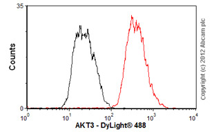 Flow Cytometry-Anti-AKT3 antibody [66C1247](ab13919)