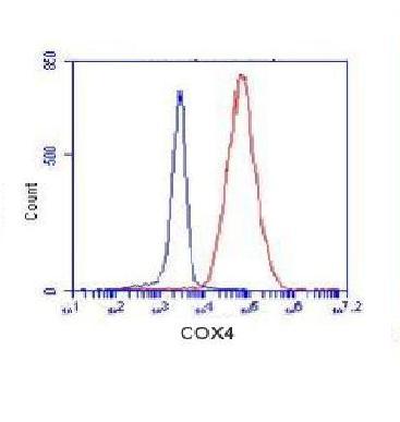 Flow Cytometry - Anti-COXIV Isoform 2 antibody (ab131177)
