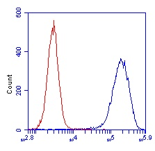 Flow Cytometry - SDHA antibody [2E3] (ab14715)