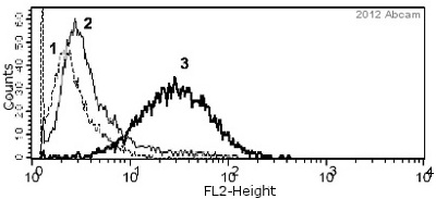 Flow Cytometry - Anti-Ki67 antibody - Proliferation Marker (ab15580)