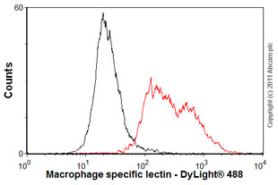 Flow Cytometry-Macrophage specific lectin antibody [ER-MP23](ab15635)