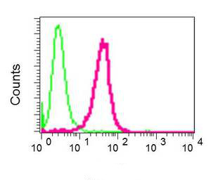 Flow Cytometry - Anti-CLEC2D antibody [EPR6584(2)] (ab151738)