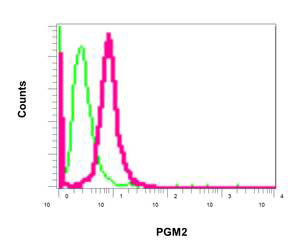 Flow Cytometry - Anti-PGM2 antibody [PGM2] (ab154180)