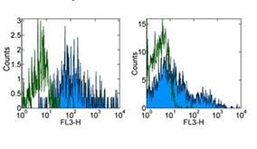 Flow Cytometry - Anti-HLA DR antibody [LN3], prediluted (PE/Cy7 ®) (ab155347)