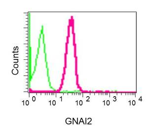 Flow Cytometry - Anti-G protein alpha Inhibitor 2 antibody [EPR9469] (ab157204)
